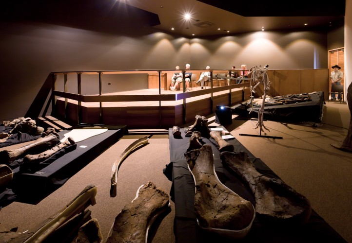 Australian Age of Dinosaurs Museum - Winton, QLD <br ⁄>